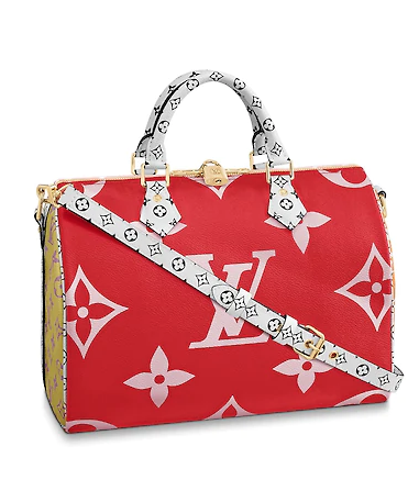 https://ca.louisvuitton.com/eng-ca/products/speedy-bandouliere-30-nvprod1390064v